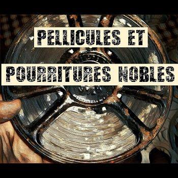 pellicules et pourritures nobles