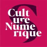 culture numerique